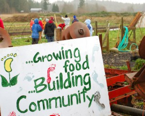 growing food building community